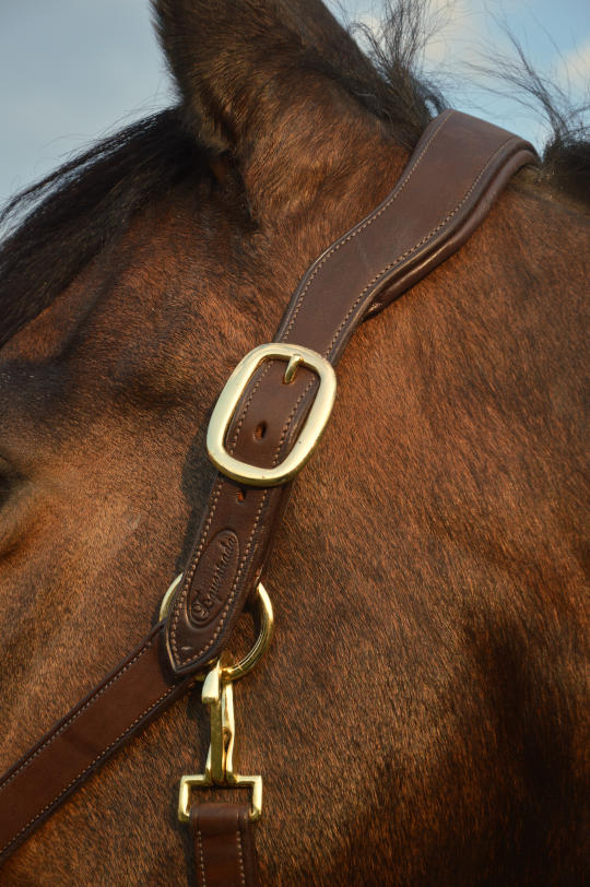 Equestrada Lederhalfter